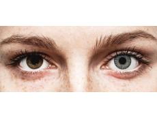 Lentilles de contact Gris - correctrices - TopVue Color (10lentilles journalières)