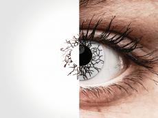 ColourVUE Crazy Lens - Vikingdom - journalières non correctrices (2lentilles)