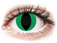 CRAZY LENS - Cat Eye Green - journalières non correctrices (2 lentilles)