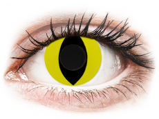 CRAZY LENS - Cat Eye Yellow - journalières non correctrices (2 lentilles)