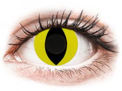 CRAZY LENS - Cat Eye Yellow - journalières non correctrices (2 lentilles)